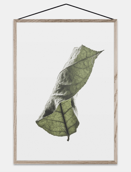 Bilde av Floating Leaves 04 - A3